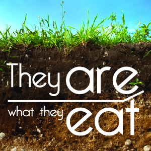 They are what they eat