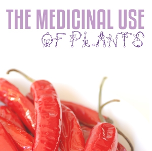 The medicinal use of plants